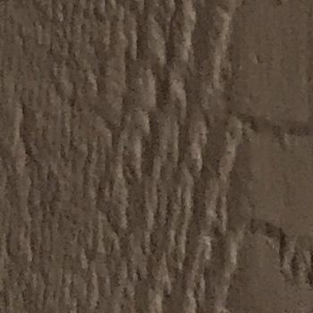 paint sample quaker tan