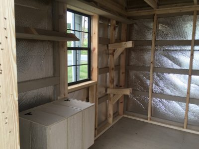 Storage Shed with Shelving